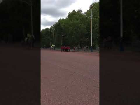London Buckingham palace BTandMB
