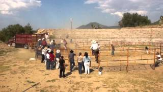 rancho el jazminal