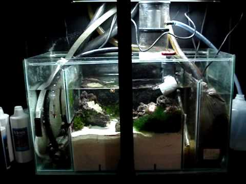 diy sump refugium setup part 1 of 4 youtube