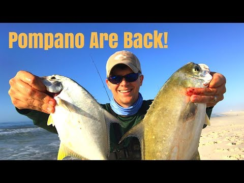 Pompano Are BACK In Gulf Shores - My Uncle Catches His BIGGEST Fish Ever!