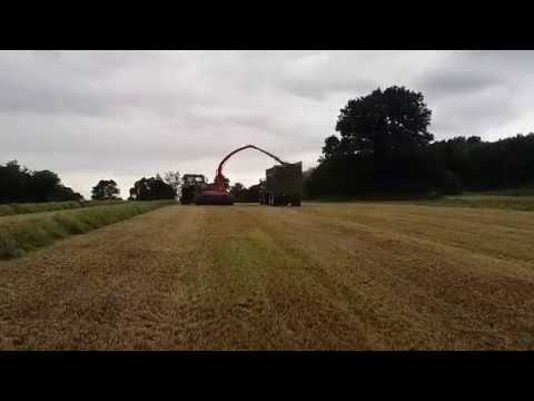 Jf 1460 In Action @ Wootton Farms (JCB Estate)