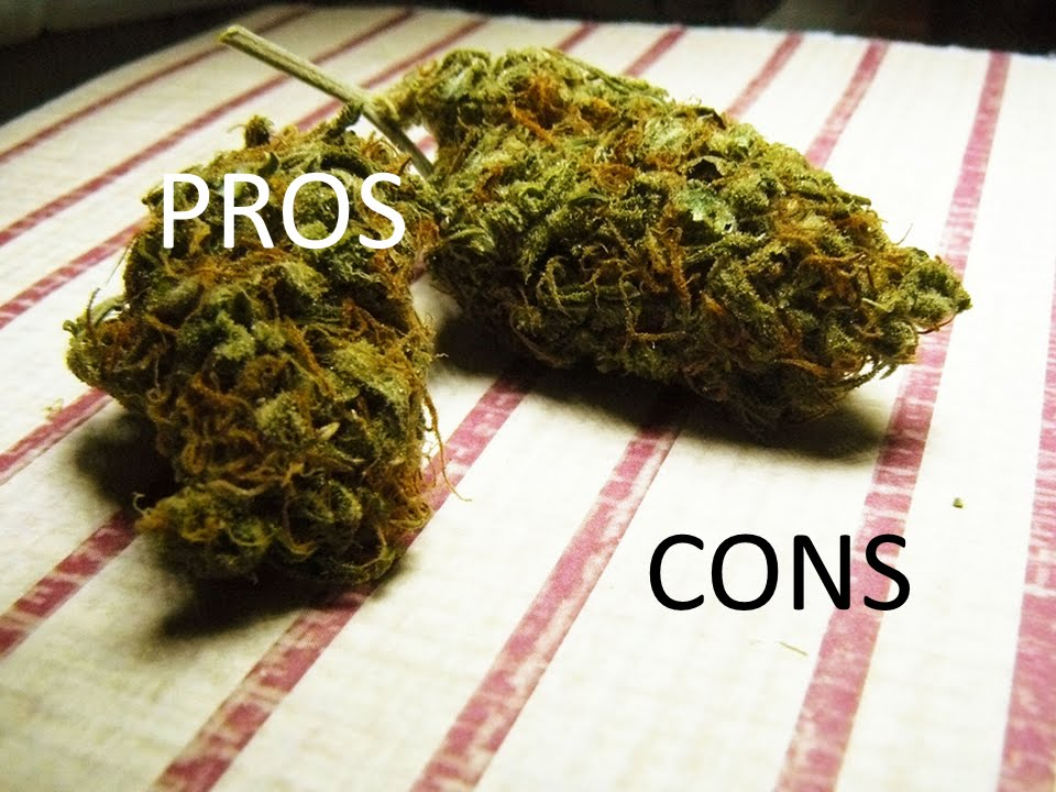 an analysis of the pros and cons of legalizing marijuana Free essay on pros and cons to legalizing illegal drugs echeat 7 aug 2015  legalizing marijuana essay depicts the pros and cons of this issue if you need to .
