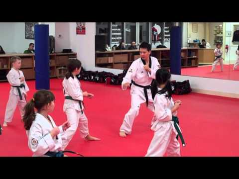 Master Moon's Tae Kwon Do - Kids Class
