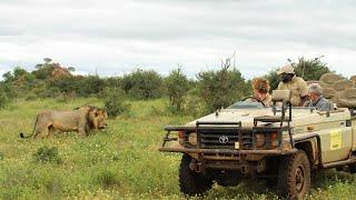 Wildlife Crash Course