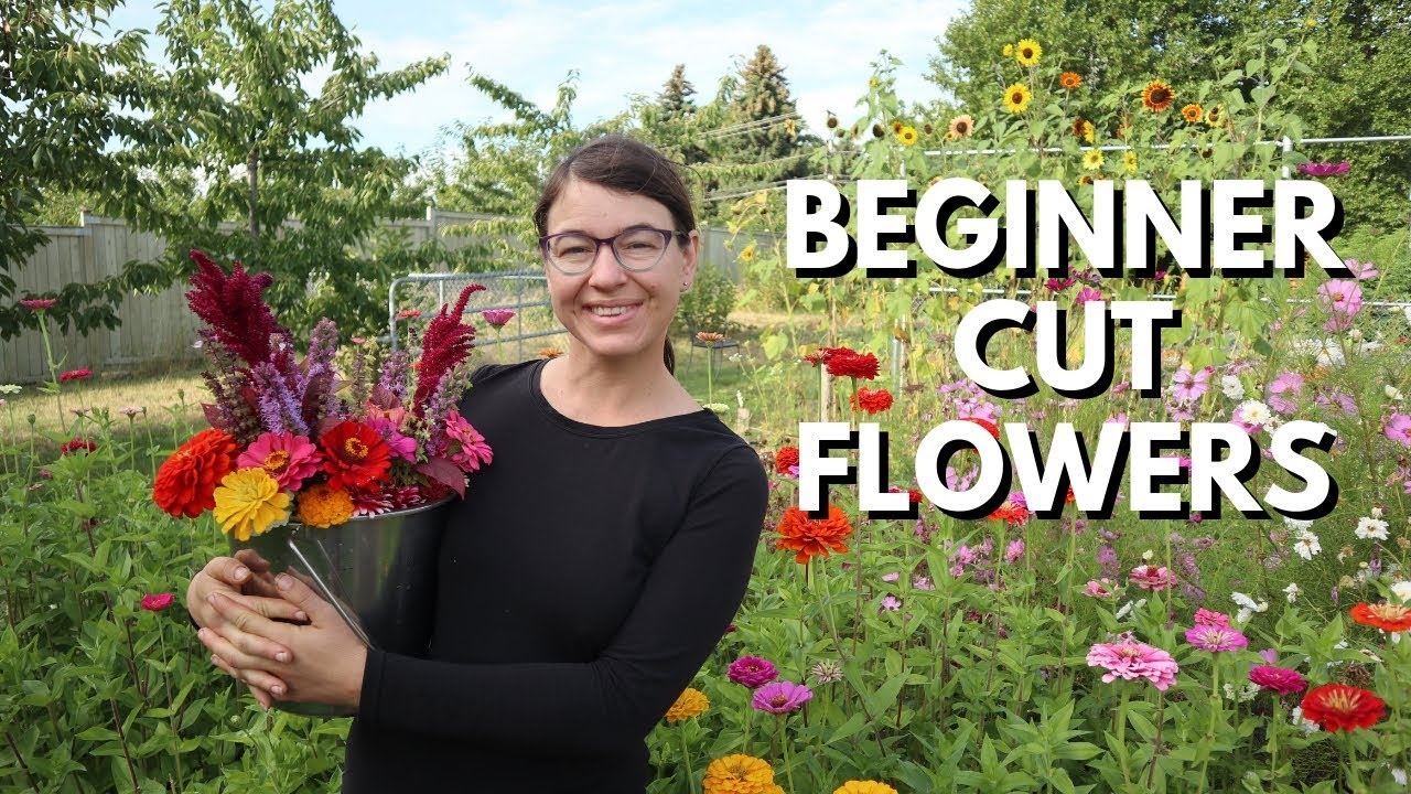Cut Flower Garden For Beginners From Seed To Bouquet Youtube