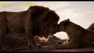 《獅子王》電影版 真正的王者 7月17日(三)王者榮耀