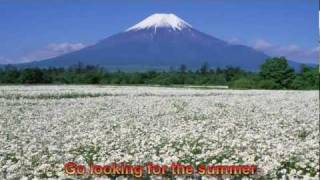 Chris Rea - Looking For The Summer - with Lyrics