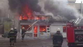 пожар на лесном масиве в киеве