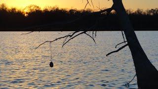 yoyo fishing for catfish avoyelles parish louisiana