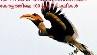 100 BIRDS OF KERALA INDIA.