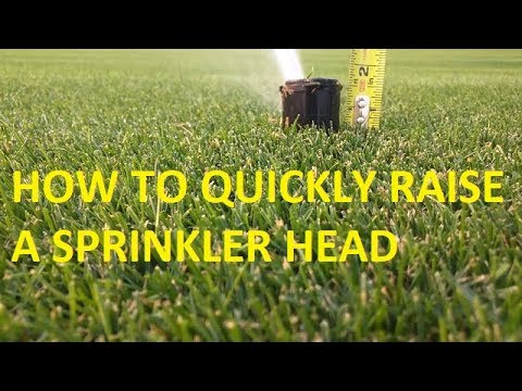 How to raise a sprinkler head in under 5 minutes