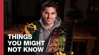 how-to-grow-a-martian-salad-on-earth