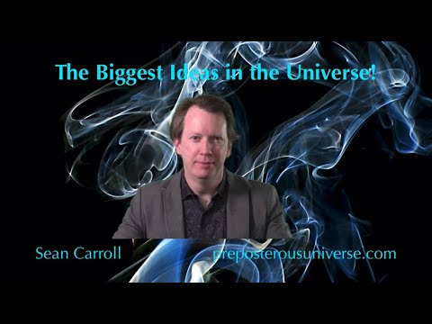 The Biggest Ideas in the Universe | 20. Entropy and Information