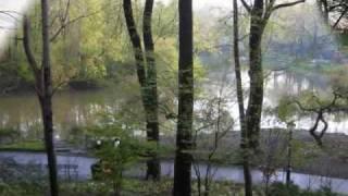 Neil Sedaka Run Samson run - Central Park - New York.mp3