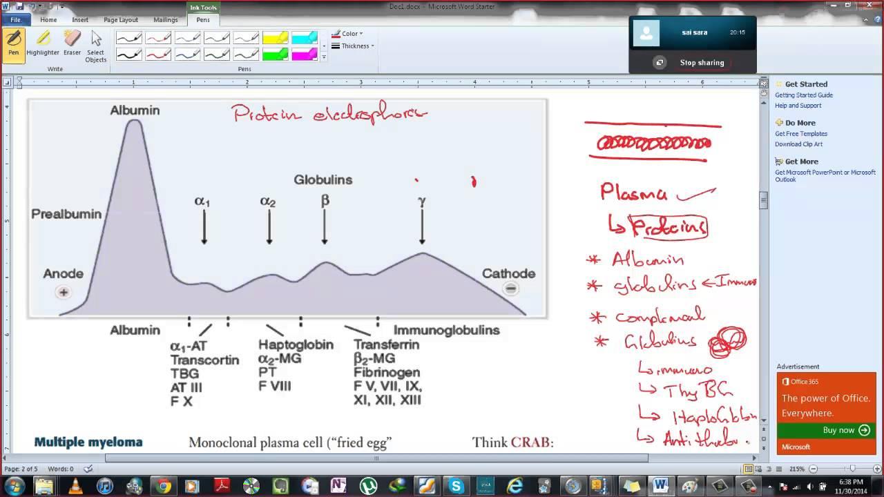Serum Protein electrophoresis - YouTube