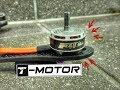 BEST FREESTYLE MOTOR?!    T-Motor F40 v3 Review