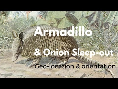 Armadillo and Onion Sleep-out: Geo-location, orientation, and shading (SketchupMake)