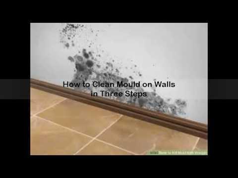 how to kill mold on drywall
