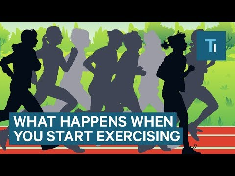 what-happens-to-your-body-when-you-start-exercising-regularly-|-the-human-body