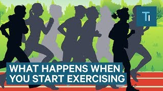 What Happens To Your Body When You Start Exercising Regularly | The Human Body
