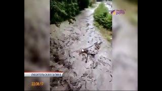 В Дагомысе сошел селевой поток