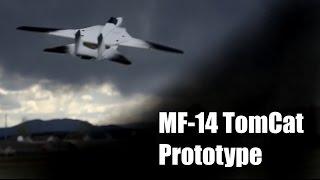 MESArc - MF-14 Tomcat Prototype