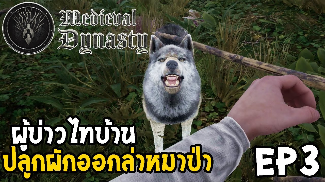 Medieval Dynasty ไทย EP3 ปลูกผักออกล่าหมาป่า
