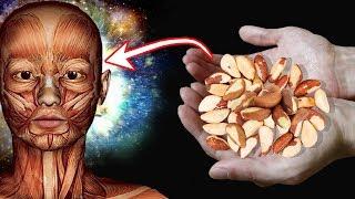 A castaña alergia de las nueces semilla extracto de