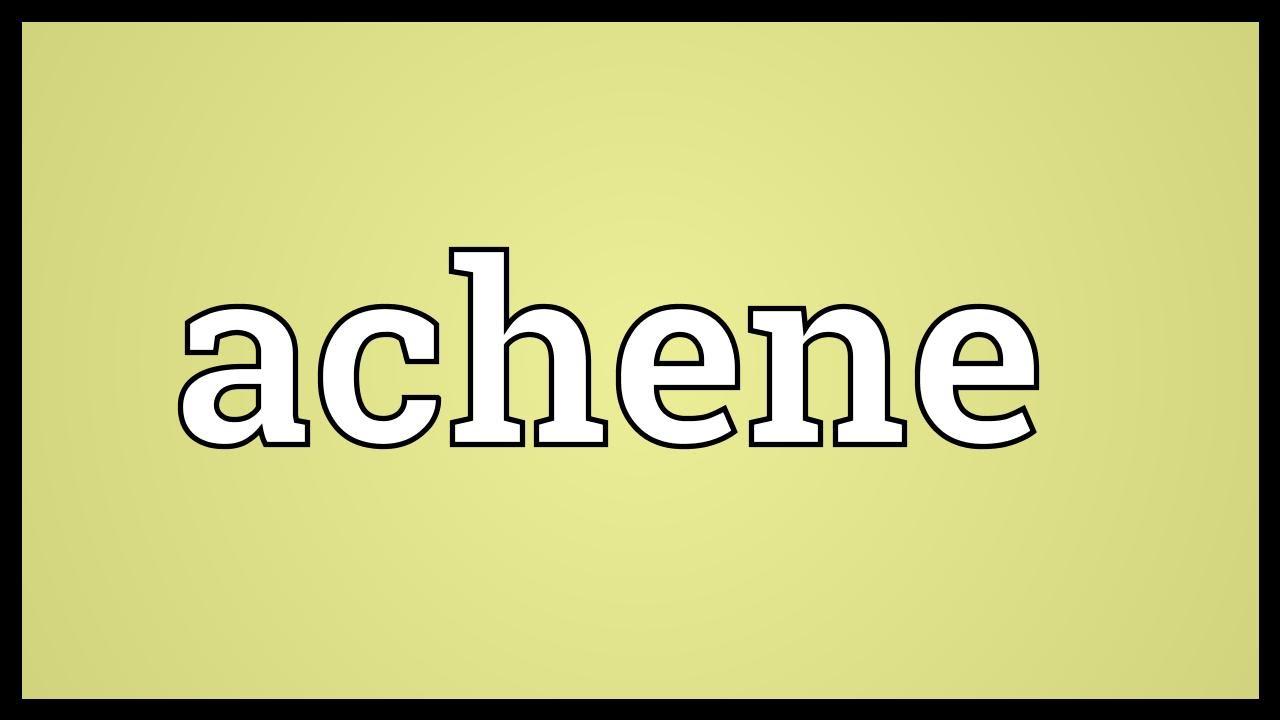 Achene Meaning