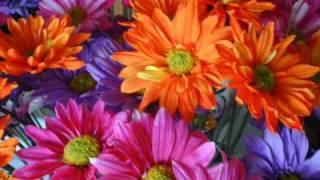 Alvaro Scaramelli Un ramo de flores