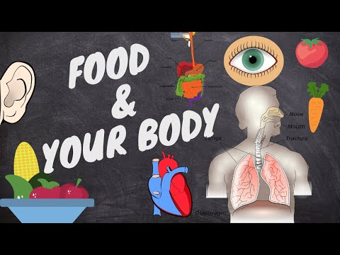 KNOW YOUR BODY AND FOOD I HEALTH DIET I Platinumstylezone from YouTube · Duration:  2 minutes 39 seconds