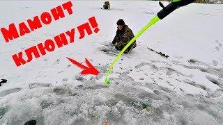 Все таки нашел хорошего карася! Зимняя рыбалка с Михалычем!