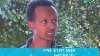 Ethiopia News Agency News