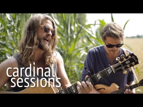 Mighty Oaks - The Great Northwest - CARDINAL SESSIONS (Appletree Garden Special)