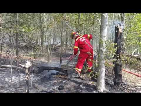 Spring Lake Township woods fire 2
