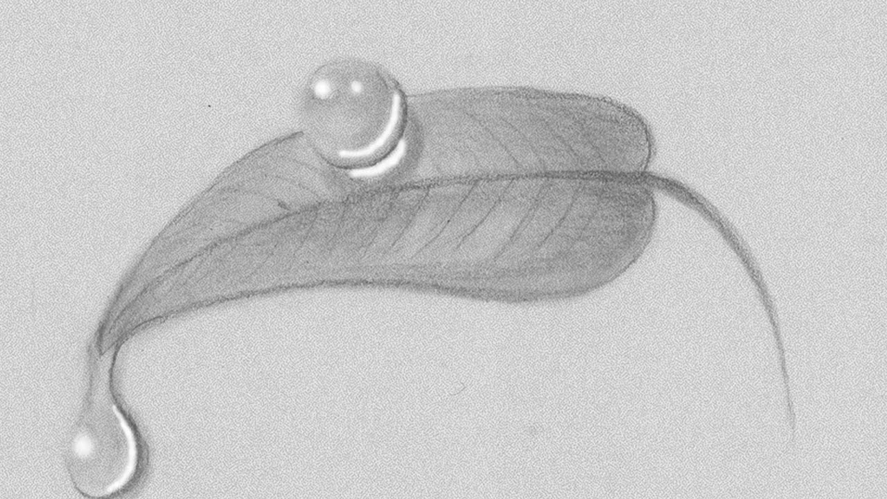 How to draw or sketch realistic water drops on a leaf