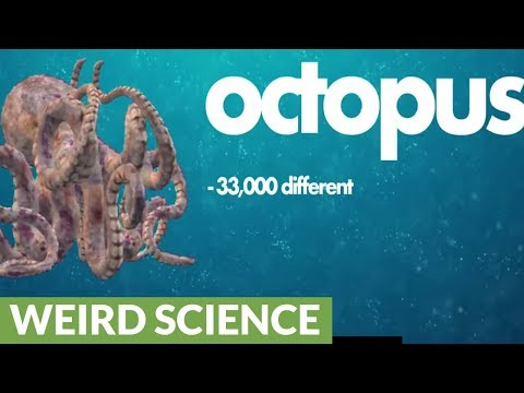Octopuses are from space because of alien DNA?