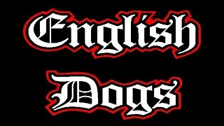 English Dogs @ Camden Underworld - 23.06.15 (pt1)