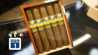 """TPHCM: Phát hiện lô xì gà """"khủng"""" nhập trái phép"""
