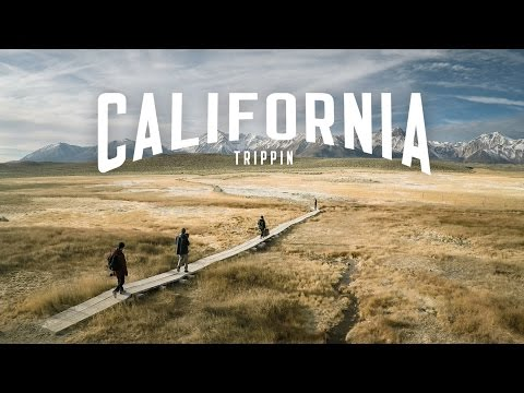 California Trippin - The full story