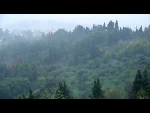Rain TV Italy ambient rain video for yoga, meditation, and soothing  and tranquil sleep