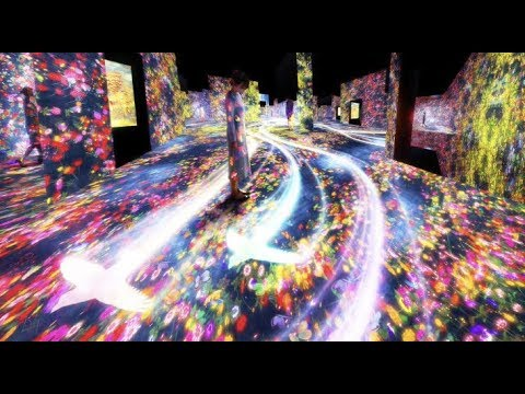 World's first digital museum in Tokyo: amazing photo that will make you fly to Japan!
