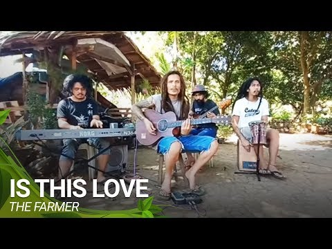 Is This Love - Bob Marley | The Farmer