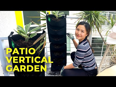 turn-my-apartment-patio-into-a-tiny-vertical-garden!-|-container-gardening-from-seeds