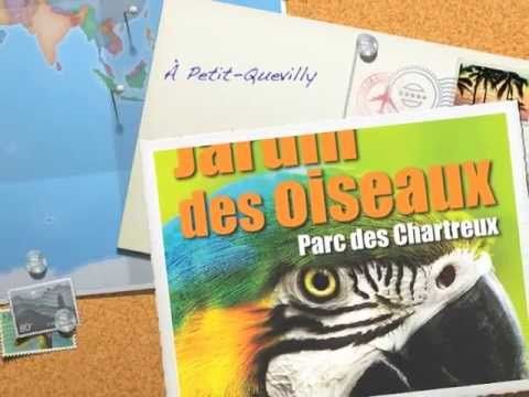 Jardin des oiseaux youtube for Oiseaux des jardins