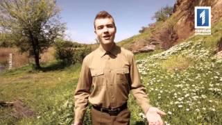 Максим Прокопчук - «Поговори со мною мама»