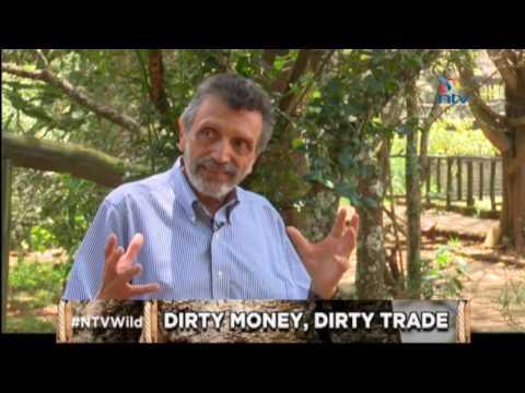 "NTV Wild Talk S1 E8 ""Dirty Money, Dirty Trade"" 22 March 2016"