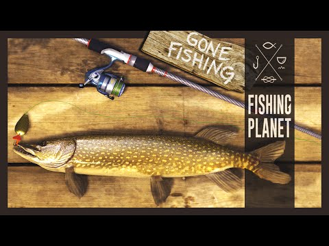 Fishing Planet - Good Fishing Spots!