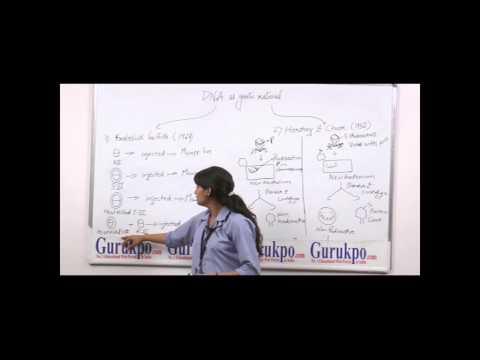 DNA as Genetic material (B.Sc., M.Sc.) by Ms. Jyoti Kumari