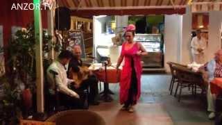КАНАРЫ: Очередной день на Канарах... TENERIFE CANARY ISLANDS SPAIN